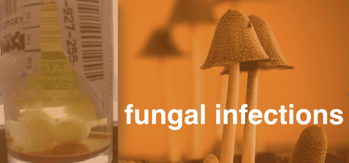 fungal_wide