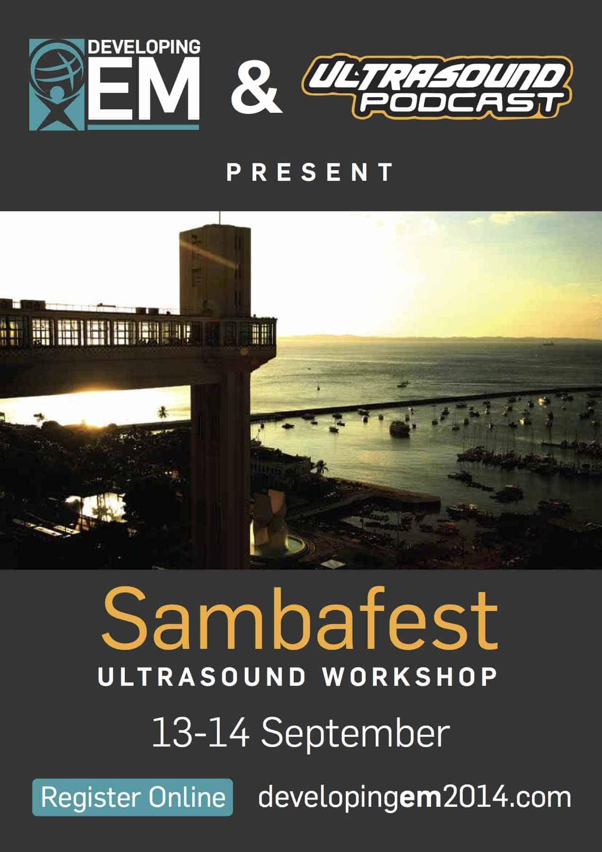 DevEM_SambafestBrochure_DRAFT