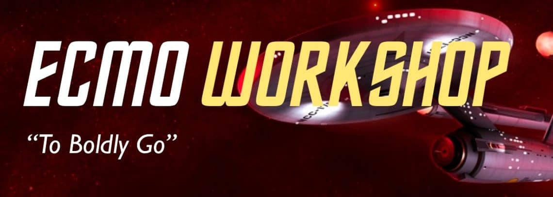 ecmo workshop