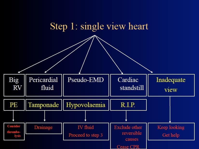 Step 1 - Single View Heart