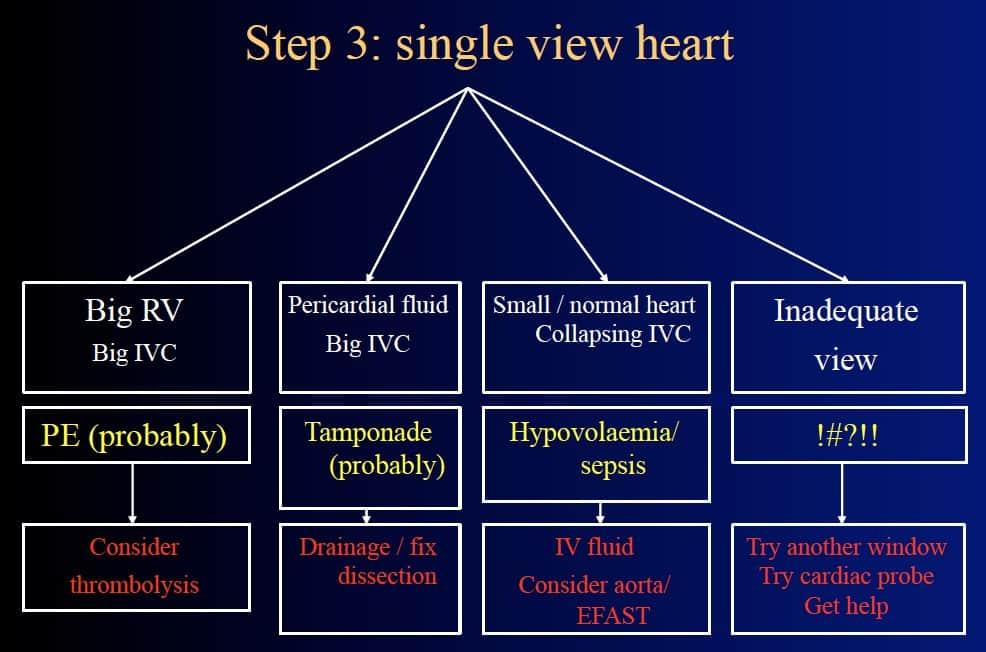 Step 3 - Single View Heart