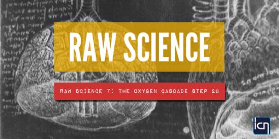 Raw Science 7- The Oxygen Cascade Step 2b-02