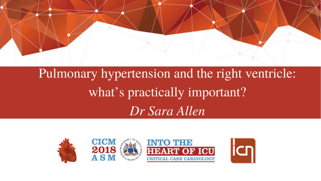 Pulmonary hypertension and the right ventricle: what's practically important?