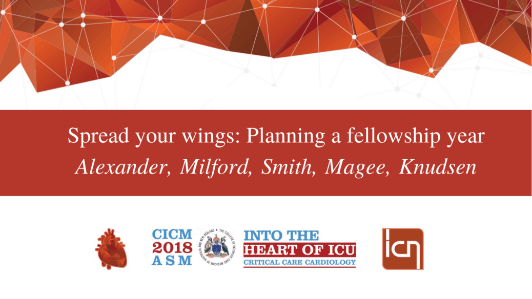 Spread your wings: Planning a fellowship year