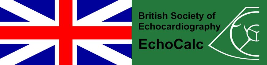 Fantastic Echo App